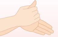 2. 両手のひらをよくこする