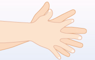 5. 指の間は根元にすり込む