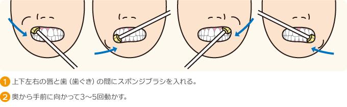 口腔内ストレッチの方法(唇)