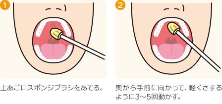 口腔内ストレッチの方法(上あご)